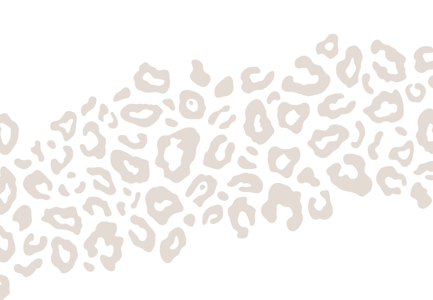 Decorative cheeta pattern