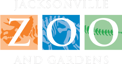 Jacksonville Zoo and Gardens dinosaur themed logo